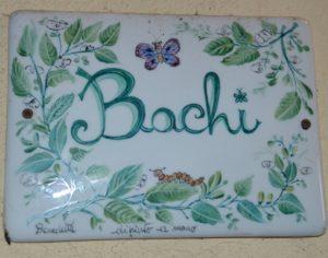 targa-bachi